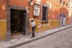 Tumbleweed (LanaScape Photos) Tags: motion blur color texture mexico sanmigueldeallende select