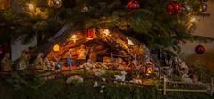 Krippe (Fooß) Tags: weihnachten krippe tannenbaum schmuck jesus maria josef hirte könig heilig moos holz engel esel ochse stall christmas xmas 2016