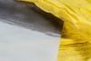 Ochre veil (Mónica Leitão Mota) Tags: tree thread yellow paper mixedmedia fabric fiberart ochre freemotionstitching