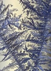 Ice crystals 2/4 (Kuvasta Kuvaan) Tags: blue winter macro ice closeup finland nikon frost outdoor talvi luonto icecrystal jää pakkanen d5100 jääkide