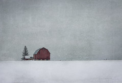 Country Living (Tom Landretti) Tags: winter snow texture field wisconsin barn farm country redbarn centralwisconsin wisconsinwinters