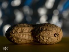 splinson's selection 2015 (spline_splinson) Tags: closeup nuts frucht nahaufnahme walnuss nuss