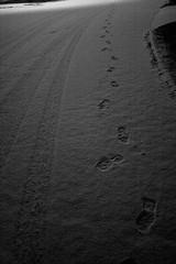 Tracks (imjackhandy) Tags: road morning snow haiku knoxville walk tennessee tracks footprints tiretread 575 theothermorning meadowlarklane