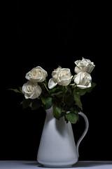 Roses (crgshpprd) Tags: light roses daisies umbrella grid flash daisy modified eucalyptus hyacinth strobe onelight singlestrobe removedfromstrobistpool incompletestrobistinfo seerule2