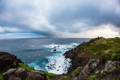 2016.01.06-Maui-011 (c_tom_dobbins) Tags: hawaii maui nakalele