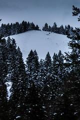 boise_peak-13 (grantiago) Tags: snowboarding skiing idaho boise snowmobiling noboarding boisepeak