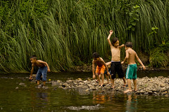 Kids at the Swimming Hole 38 (ArdieBeaPhotography) Tags: boy water forest swim river fun climb kid jump bush child play cloudy dive stony maori swimsuit leap throw togs pakeha