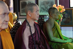 Model Monks (conorcampbell95) Tags: street people thailand temple asia colours religion fake monk indoor mai wax chiang