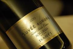cuvee aurora banfi (burde73) Tags: faro wine sicily tasting taormina vigne sicilia vino banfi nocera degustazione castellobanfi nerellocappuccio andreagori banfidistribuzione rossosoprano nerettomascalese santan salvatoregerani faropalari