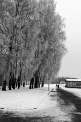 Barracones (Luis R.C.) Tags: paisajes nikon bn viajes alemania dachau d610