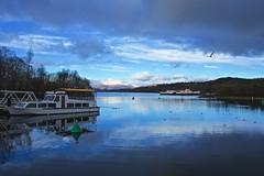 Loch Lomond (billmac_sco) Tags: water landscape scotland scenic lochlomond