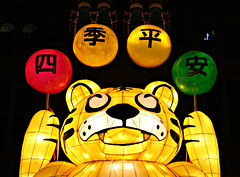 2016 Sydney Chinese New Year #54 (dominotic) Tags: horse dog rabbit monkey pig rat dragon snake tiger sydney goat australia ox festivaloflight nsw newsouthwales rooster chinesezodiac yearofthemonkey 2016 cityofsydney sydneychinesenewyear lunarnewyearcelebration cnysyd lunarlanterns
