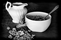 Suponer (Agustina Santervs) Tags: bw stilllife byn bodegn cereales agustina trigo suponer