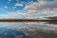 Reflections at Chucuyo (Andres Puiggros) Tags: chile reflection espejo reflejo mirrow altiplano arica chucuyo