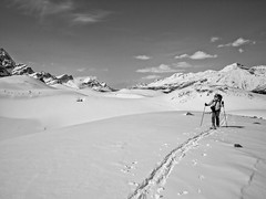 Skiing to Crowfoot Pass, Banff National Park, Alberta (Cwep) Tags: canada blackwhite skiing artistic location alberta activity banffnationalpark aspect 2011 4x3 crowfootpass