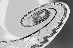 SPIRALE (CICERUACCHIO) Tags: venice blackandwhite italy architecture veneza spiral mono nikon italia staircase venise venecia venezia venedig architettura escalier italie grandcanal biancoenero spirale chiocciola veneto  canalgrande helicoidal elicoidale helical  vntie   sanvio tomasobuzzi palazzocini scalaovale