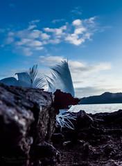 A little piece of heaven (mveskilt) Tags: blue sky lake art dark landscape photography feather peaceful waterscape