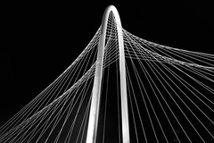 Strings Attached (Slider) Tags: bridge blackandwhite bw white lines architecture night dallas aperture texas arch cables trinityriver margarethunthillbridge