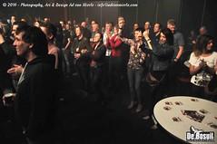 2016 Bosuil-Het publiek bij The Brew en Rusty Roots 7