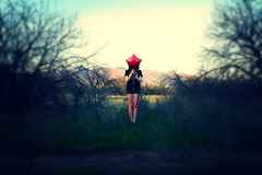 D2:Balloon (Fera Lucem) Tags: red arizona balloon brookeshaden