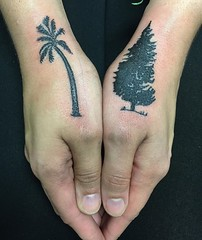 palm tree evergreen tree hand tattoo by Wes Fortier at Burning Hearts Tattoo Co. - Waterbury, CT