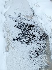 Black Beck (keibr) Tags: winter snow ice crystals blip iceflowers blipfoto blackbeck keibr blesjn