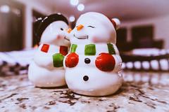 Seasons Greeting (rpcann) Tags: winter pepper counter salt snowmen 365project