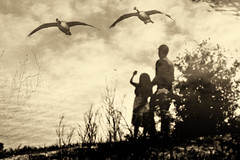 A dream from the past...HSS (LotusMoon Photography) Tags: sky lake postprocessed love childhood birds digital photomanipulation manipulated flying geese father memories daughter relationship layers emotional remembrance sentimental latesummer hss