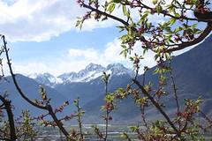 photo 2 (luka116) Tags: suisse paysage avril valais 2016 mayenmoret charratvison