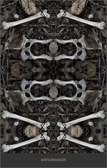 Knochenspiegelung 3 (Weinstckle) Tags: bltter spiegelung knochen tierknochen