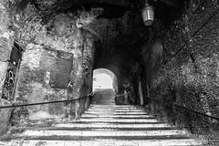 roma-921 febbraio 2016 (Fabio Gentili Photography) Tags: bw italy rome roma bn coliseum foriimperiali colosseo