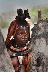 Himba girl behind tree (Stan de Haas Photography) Tags: africa original portrait people woman cute nature girl beautiful face female hair nude person living necklace village married mud natural skin native outdoor head expression african south traditional young culture style tribal hut clay bracelet local tradition tribe northern ethnic namibia cultural authentic indigenous himba standehaas