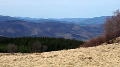 mramarosi tj / mountain landscape (debreczeniemoke) Tags: mountains landscape spring hegy tavasz tjkp gutin maramure mramaros gutinhegysg muniiguti olympusem5 gutinmountains