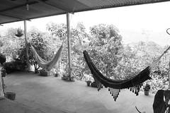 Dos puestos hacia un viaje onrico (RowAPJ) Tags: ranch house relax venezuela hamacas