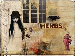 Urban Garden (jimlaskowicz) Tags: city urban woman painterly texture window hat collage composite hydrant garden dark artistic herbs grunge surreal raven derby impressionistic