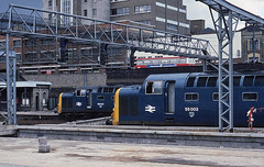 Kings Cross changes - 2 (Bingley Hall) Tags: uk railroad blue england london train br diesel britain transport platform engine rail railway signals transportation locomotive kodachrome kingscross napier britishrail deltic englishelectric class55 55013 55003