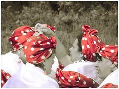 SAM_2346 (Fabio Coralli) Tags: banda festa amici sagra ciliegia strumenti musicali celleno