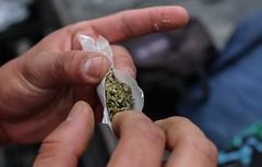4 de cada 10 detenidos por drogas llega a la crcel por llevar menos de 500 pesos en sustancias (oaxacacapital) Tags: mota drogas marihuana vicios adicciones legalizacionmarihuana estufepacientes marihuanaliberacion