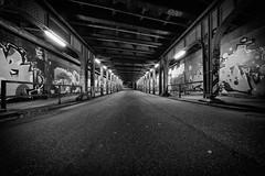 paso inferior II (Zesk MF) Tags: street white black art night train writing concrete lights graffiti nikon letters tracks sigma tunnel line graff 8mm trier nachts unterfhrung longtime langzeit zesk d5500