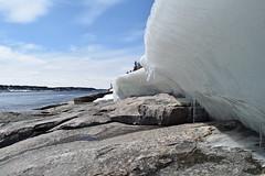 DSC_0089 (frederic.larochelle) Tags: snow canada ice water rock america forest river la grande melting quebec north rivire neige fonte glace boreal taga lg1