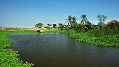 Duong Lam 400 year old village (Luxury trips in Vietnam Laos and Cambodia) Tags: temple cycling pagoda countryside village hanoi ricefields waterbuffalos greenfields duonglam