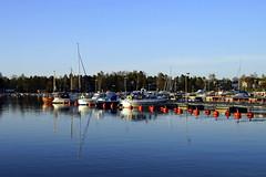 First blues of May (Joni Mansikka) Tags: trees sea sky nature marina suomi finland landscape boats bay pier blues balticsea buoys rauma syvnraumanlahti