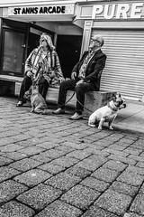 Was it something I said? (tootdood) Tags: people blackandwhite dogs manchester couple sitting sit said sat pooch something seated fromthehip streetcandid canon70d
