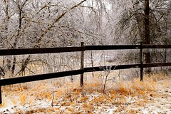 DSC_1045_126 (Jeffery A. Smith) Tags: ice fence nikon icestorm northdakota freezingrain fenceline woodfence bottineau woodpost d3300