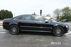 Audi S8 with 22in Lexani CVX44 Wheels and Pirelli Nero GT Tires (Butler Tires and Wheels) Tags: cars car wheels tires vehicles vehicle audi rims s8 audis8 lexani lexaniwheels lexanirims butlertire butlertiresandwheels 22inlexanicvx44wheels 22inlexanicvx44rims lexanicvx44wheels lexanicvx44rims lexanicvx44 22inrims 22inwheels 22inlexaniwheels 22inlexanirims audiwith22inwheels audiwith22inrims audiwithwheels audiwithrims audiwithlexanicvx44wheels audiwithlexanicvx44rims audiwith22inlexanicvx44wheels audiwith22inlexanicvx44rims audis8with22inlexanicvx44wheels audis8with22inlexanicvx44rims audis8withlexanicvx44wheels audis8withlexanicvx44rims audis8with22inwheels audis8with22inrims s8with22inlexanicvx44wheels s8with22inlexanicvx44rims s8withlexanicvx44wheels s8withlexanicvx44rims s8with22inwheels s8with22inrims audis8withwheels audis8withrims s8withwheels s8withrims