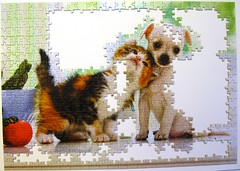 Chihuahua Puppy and Kitten (Leonisha) Tags: puzzle unfinished jigsawpuzzle