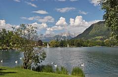 2014 Oostenrijk 0978 Zell am See (porochelt) Tags: austria oostenrijk sterreich zellamsee autriche zellersee