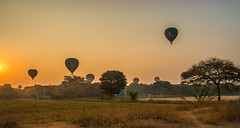 balloons at bagan, myanmar (Russell Scott Images) Tags: sunrise hotairballoons bagan myanmarburma