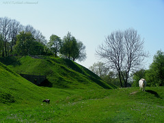 Motherland Belarus (Natali Antonovich) Tags: history landscape spring belarus oldtown oldest oldworld novogrudok navahrudak motherlandbelarus enamouredspring