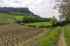 La Roche de Solutré (SylvainMestre) Tags: france fr vergisson bourgognefranchecomté